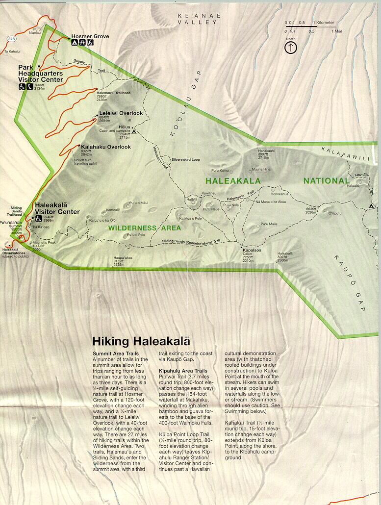 haleeak1