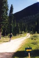wildernesstrls3gorg